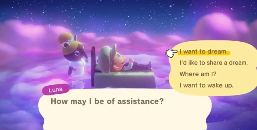 Гайд: как получить адрес мечты Animal Crossing: New Horizons